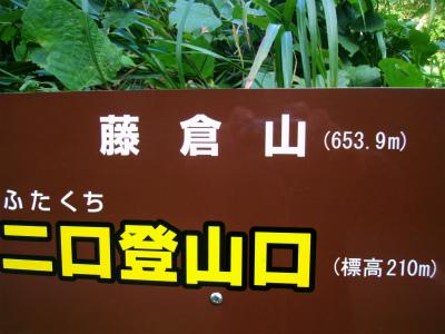 GEDC0688